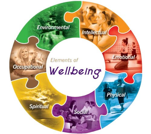 Health and Wellness wheel
